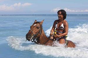 Chukka Horseback Ride N Swim LLR